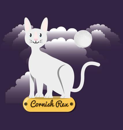 Cat cornish rex under the light of the moon vector illustration design