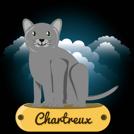 Cat chartreux under the light of the moon vector illustration design Stock Vector - 98216337