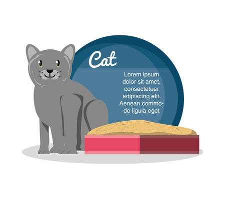 cat on sandbox icon vector illustration design
