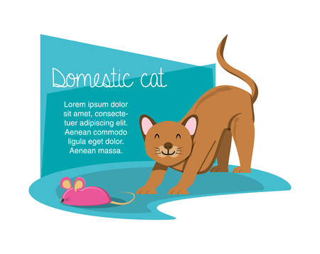 cat playing with mouse vector illustration design