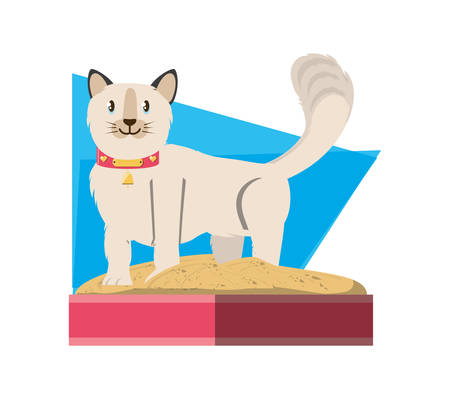 cat on sandbox icon vector illustration design