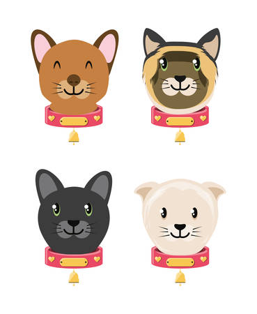 group of domestic cats vector illustration design Illustration