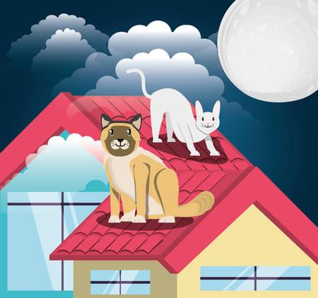 Cats under the light of the moon in the roof vector illustration design Illusztráció