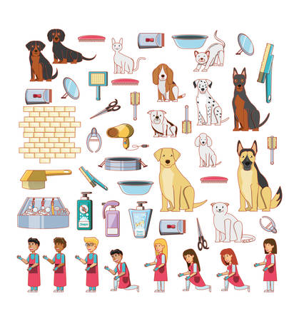 pet shop veterinary elements vector illustration design