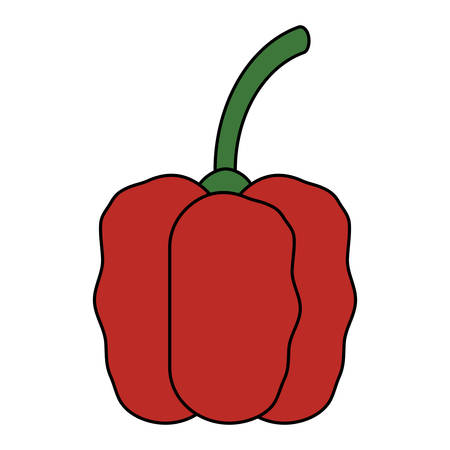 Red pepper icon over white background, colorful design. Vector illustration