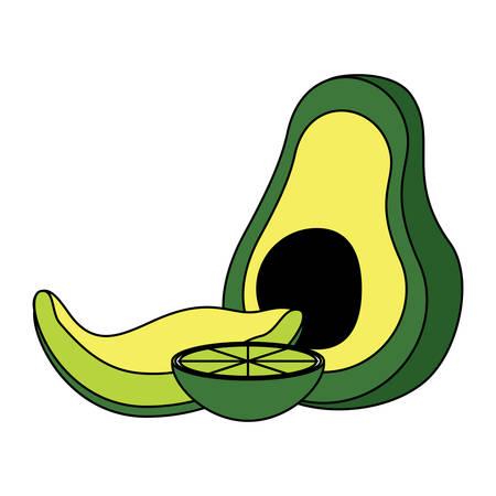 avocado and lemon slice icon over white background, colorful design. vector illustration