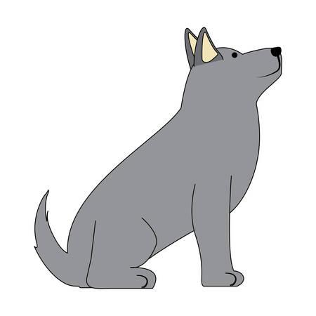 cute husky dog icon over background, colorful design. vector illustration Illustration