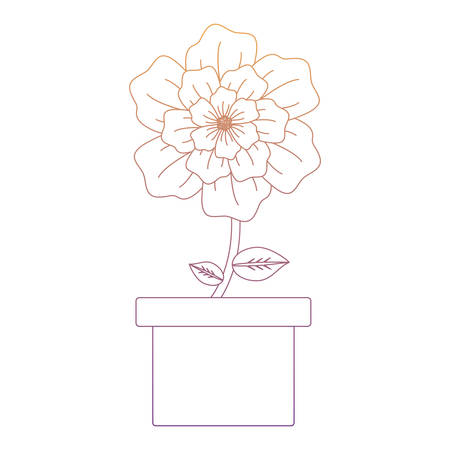flower plant in a pot over white background, colorful line design. vector illustration Vettoriali