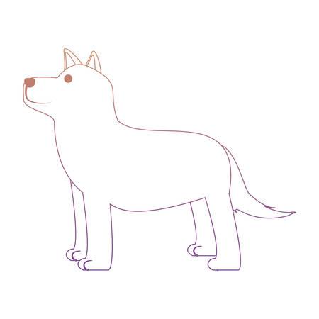Cute husky dog icon over white background illustration.