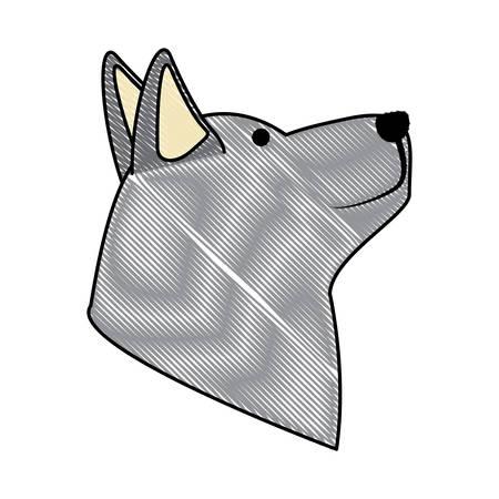 Cartoon husky dog head icon over white background, colored design. vector illustration