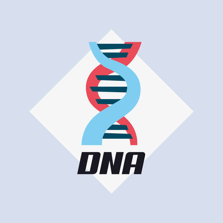 DNA molecule structure icon over white rhombus frame and gray background, vector illustration Illustration