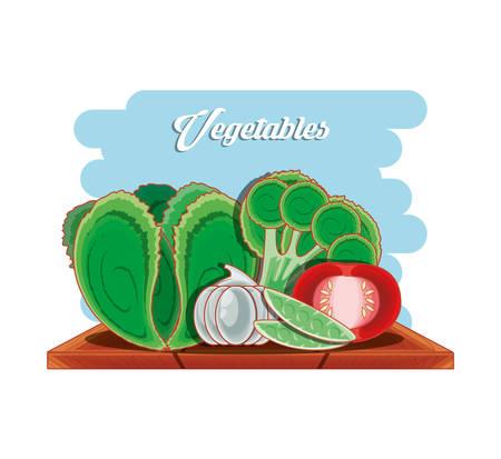Set vegetables healthy food vector illustration design