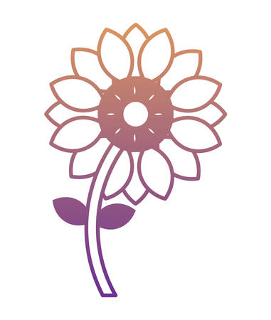beautiful flower icon over white background, vector illustration