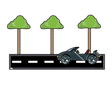 car on the road with trees over white background, vector illustration