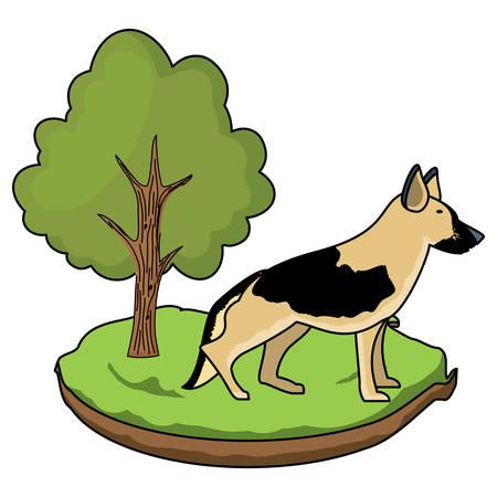 german shepherd in the grass over white background, vector illustration Illustration