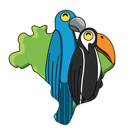 Brazil map with toucan and macaw birds over white background, vector illustration