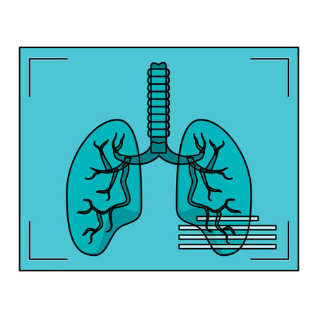 Lungs xray icon over white background, vector illustration