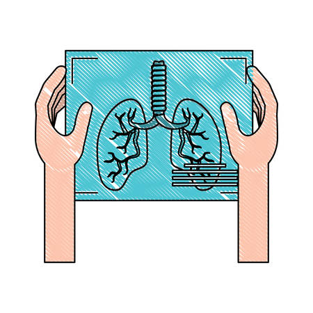 hands holding a Lungs xray icon over white background, vector illustration