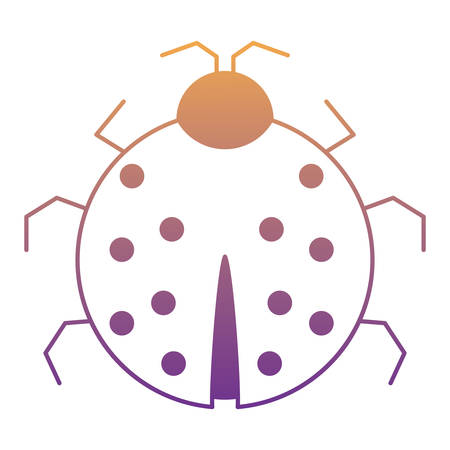 ladybug icon over white background, vector illustration
