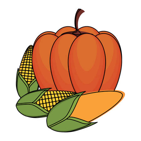 pumpkin and corns over white background, vector illustration