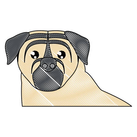 cute pug dog icon over white background, vector illustration