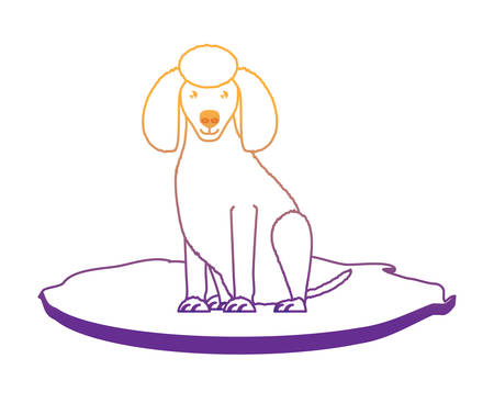 cute poodle dog icon over white background, vector illustration