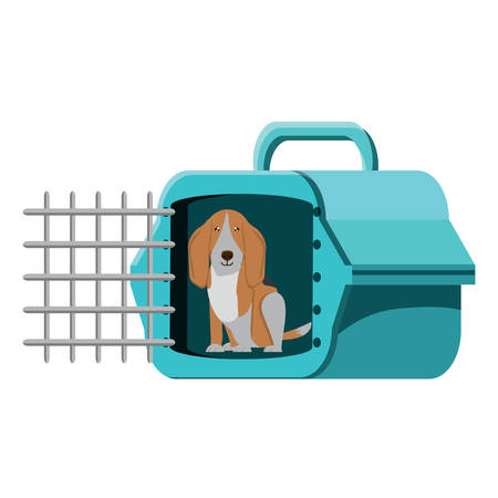 cute basset hound dog and transport box over white background, vector illustration