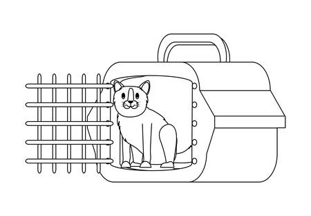 cute cat and transport box over white background, vector illustration