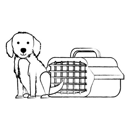 cute golden retriever dog and transport box over white background, vector illustration