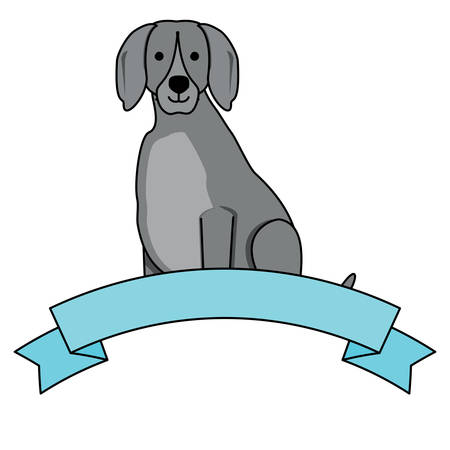 cute weimaraner dog and decorative ribbon over white background, vector illustration