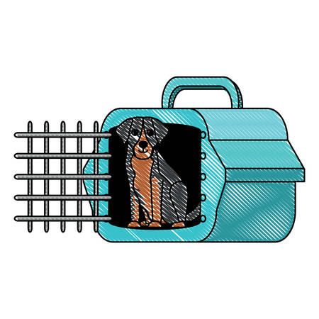 cute st bernard  dog and transport box over white background, vector illustration