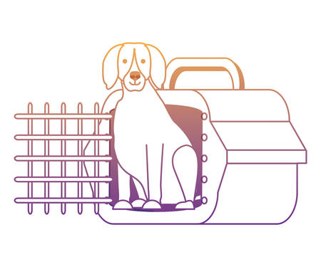 transport box with cute dog over white background, vector illustration