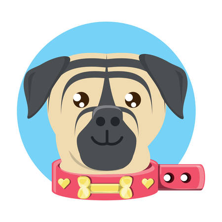 cute pug dog with collar icon over white background, vector illustration