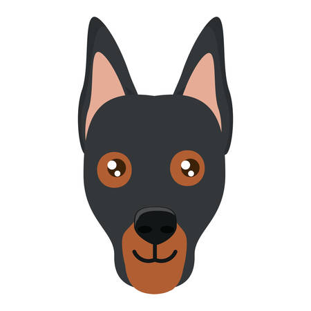 doberman dog icon over white background, vector illustration Illustration