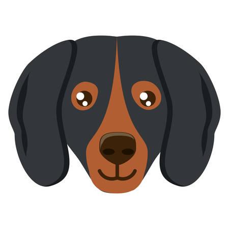 doberman dog icon over white background, vector illustration Illustration