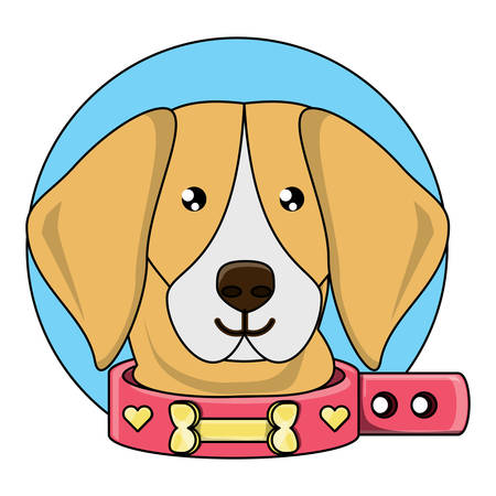 cute beagle with collar over white background, vector illustration Ilustração