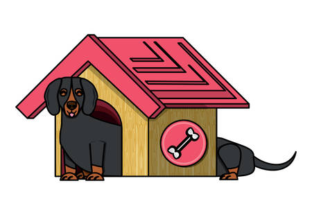dog house with cute dachshund over white background, vector illustration