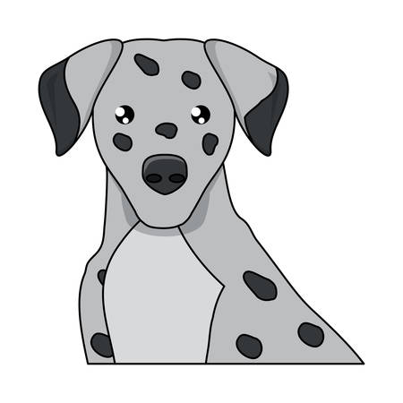 dalmatian dog icon over white background, vector illustration