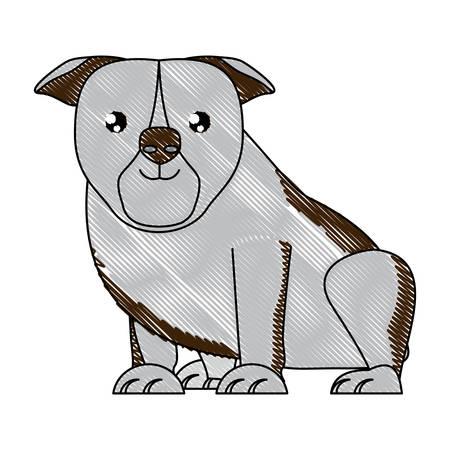 cute bulldog dog icon over background, vector illustration