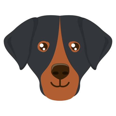 cute dashhund dog icon over background, vector illustration