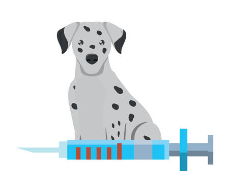 cute dalmatian and syringe over white background, vector illustration