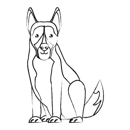 german shepherd dog over white background, vector illustration