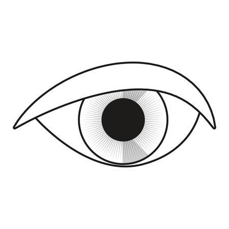 occhio umano isometrico su sfondo bianco illustrazione vettoriale