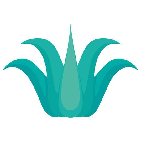 aloe vera icon over white background, vector illustration