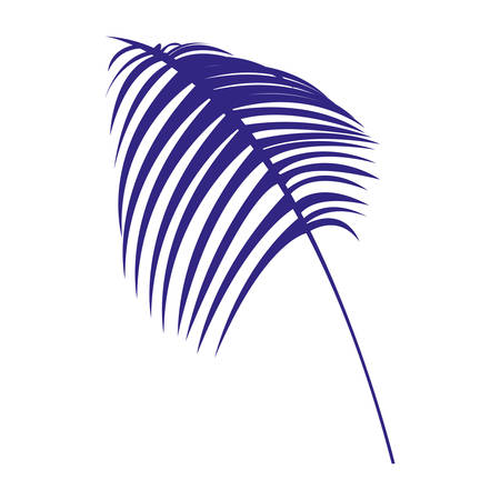 tropical leaf icon over white background, vector illustration 矢量图像