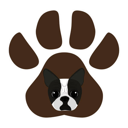 cute boston terrier in the paw print  vector illustration design  イラスト・ベクター素材