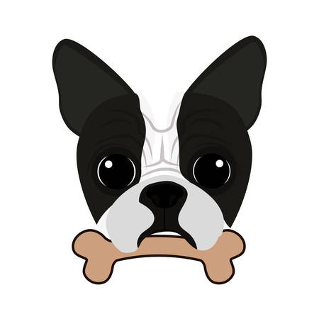 cute boston terrier with bone vector illustration design 矢量图像