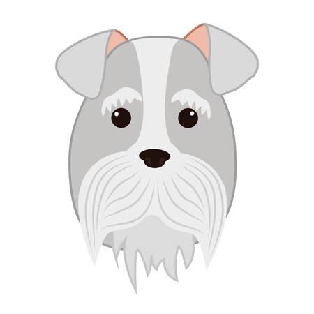 cute miniature schnauzer head vector illustration design Illustration