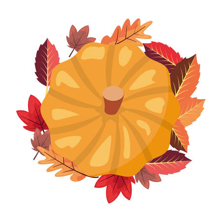 pumpkin laeves foliage white background vector illustration vector illustration