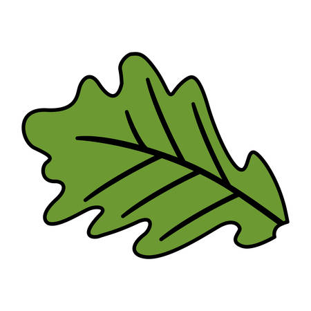leaf icon over white background, vector illustration